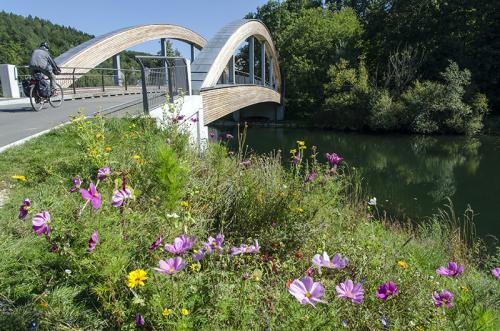 Brücke über die Donau Gutenstein